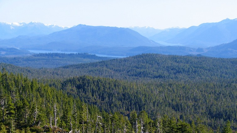 View of Northern Vancouver Island (2) - Bruce Witzel photo