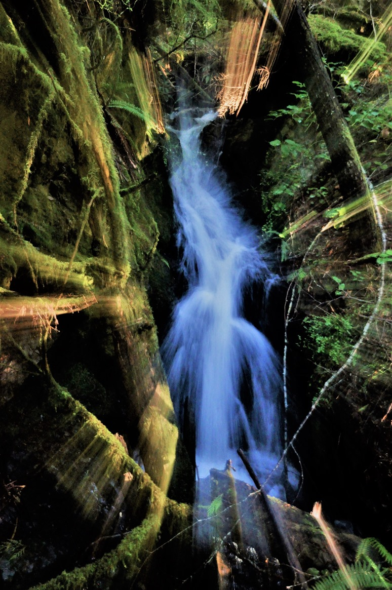 Waterfall in the forest, Dec. 31, 2013 time exposure zoomed  - bruce witzel photo (4)